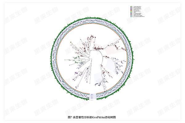 含顯著性分析的GraPhIAn進化樹圖