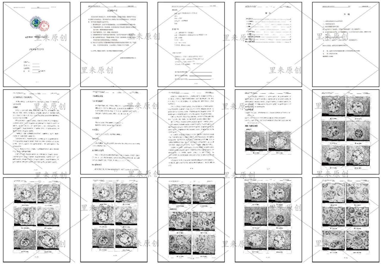 透射電鏡分析報告